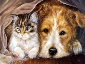 PIcture of a Dog & a Cat